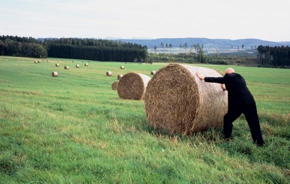 Производство нишевых продуктов - это не про агрохолдинги, - эксперт фото, иллюстрация