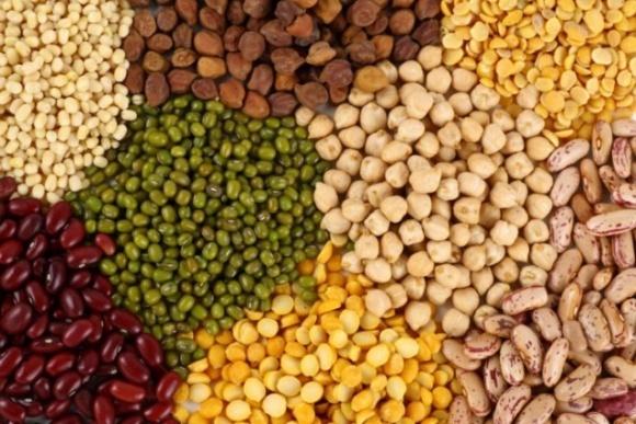 В Индии правительство мечтает отказаться от импорта бобовых, аналитики сомневаются фото, иллюстрация