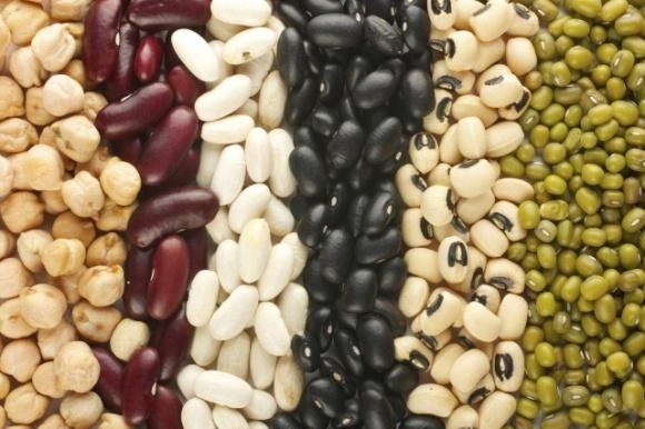 Турция и Индия могут увеличить импорт бобовых фото, иллюстрация