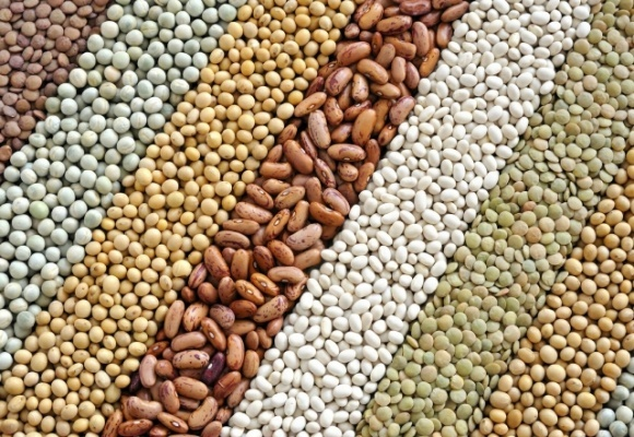 Рост цен на бобовые в Индии заставляет правительство ослаблять импортные ограничения. Надолго ли? фото, иллюстрация
