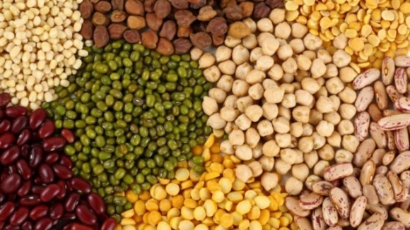 В Україні знизилося виробництво бобових культур фото, ілюстрація