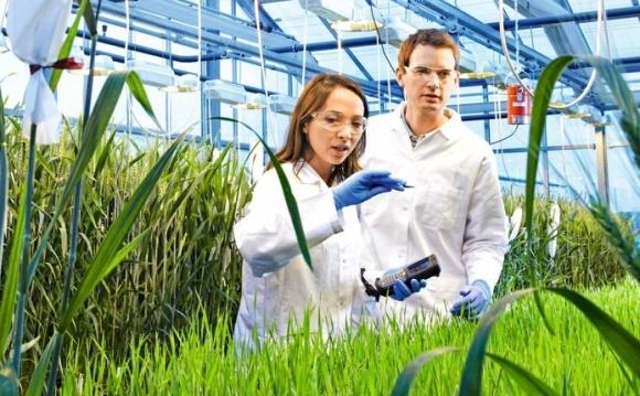 В Байер новый руководитель подразделения Crop Science в Украине фото, иллюстрация