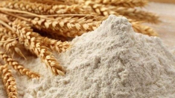 Аграрний фонд планує експортувати борошно до країн Близького Сходу та Африки фото, ілюстрація