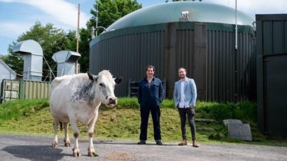 Британский фермер майнит криптовалюту из навоза фото, иллюстрация