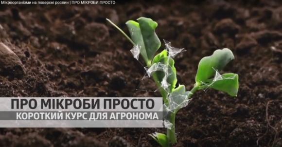 «О микробах просто» от БТУ-ЦЕНТР: вышла новая серия фото, иллюстрация
