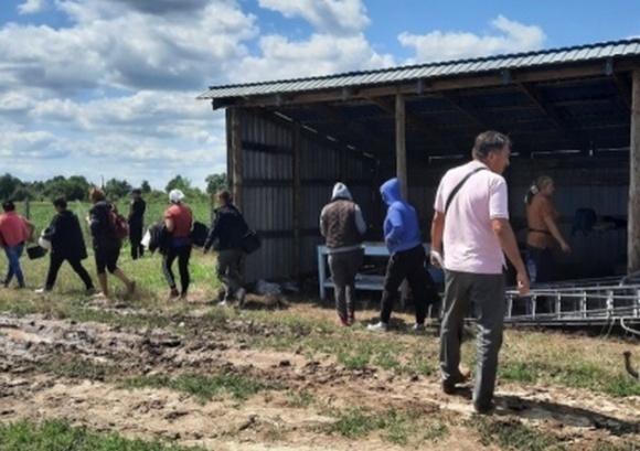 Буковинського фермера оштрафували на понад 2 млн гривень фото, ілюстрація