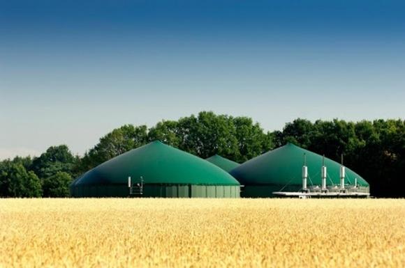 Агрохолдинг МХП представил программу для фермеров «Органический гектар» фото, иллюстрация