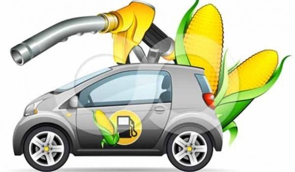 Автомобили на топливе из биомассы – уже в 2020г. фото, иллюстрация