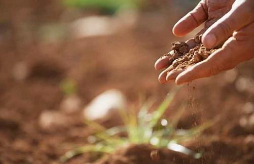 Умови для посівної критичні, план по озимим під загрозою, - Укргідрометцентр фото, ілюстрація