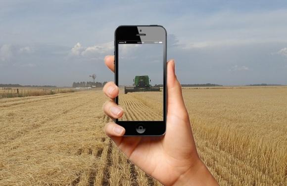 В Україні розробили онлайн-сервіс для міжнародної торгівлі органічною продукцією фото, ілюстрація