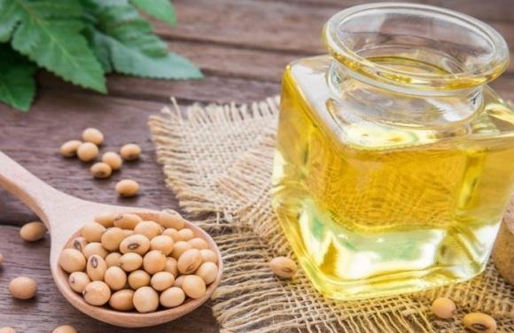 Білорусь більш ніж в 17 разів збільшила експорт соєвої олії фото, ілюстрація