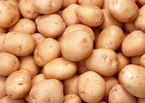 Украина начала импортировать картофель из Беларуси фото, иллюстрация