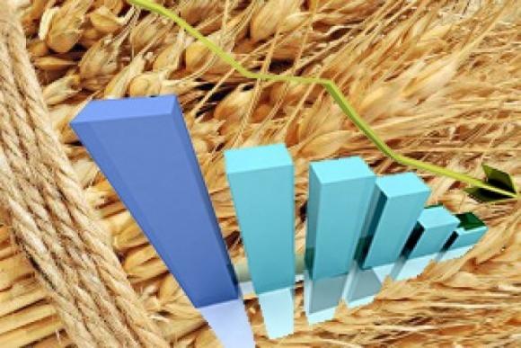 Ціни українського зерна рухаються вниз фото, ілюстрація