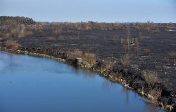 В зоне отчуждения ЧАЭС незаконно приватизировали 2 га земли фото, иллюстрация