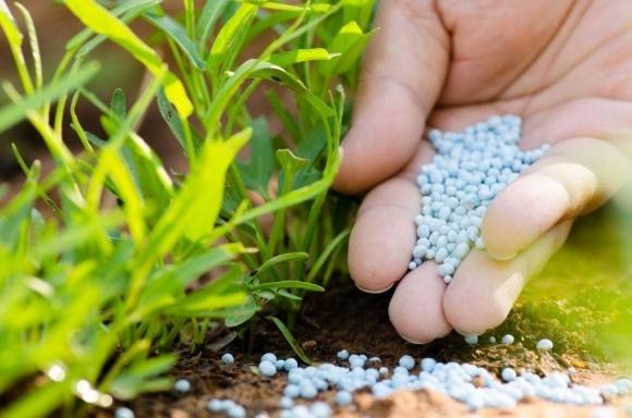 Производитель удобрений КАС откроет еще один завод до конца года  фото, иллюстрация