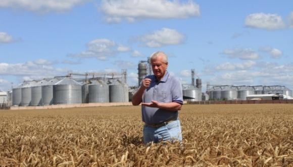 В Чернігівській області зібрали рекордний урожай зернових фото, ілюстрація