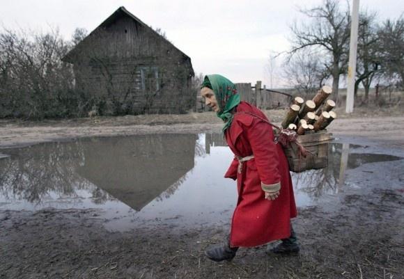 Мінекології вирішило, як використовувати землі в радіаційній зоні Чорнобиля фото, ілюстрація