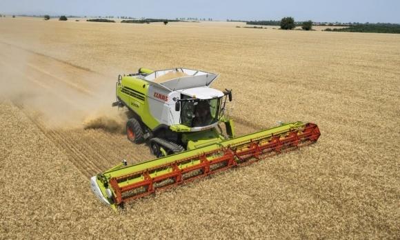 Мировое производство зерна в этом сельхозгоду станет рекордным фото, иллюстрация