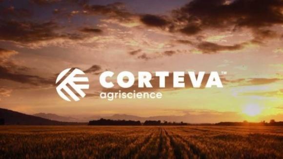 Corteva Agriscience в рейтинге лучших поставщиков товаров и услуг 2020 фото, иллюстрация