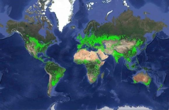 Україна входить у Топ-10 країн світу за площами орних земель фото, ілюстрація