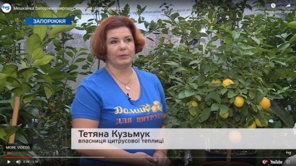 В теплице в Запорожье выращивают более 150 сортов экзотических культур фото, иллюстрация