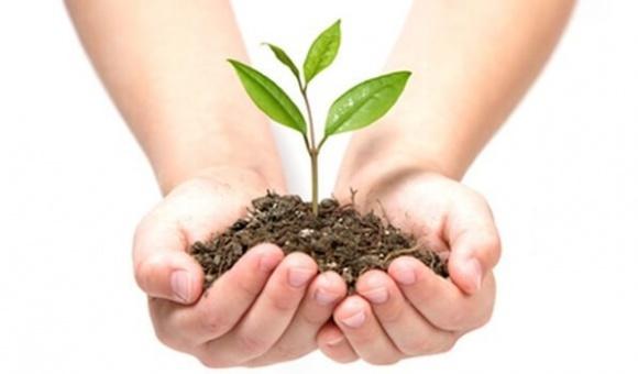 «Без ЗЗР урожаї були б удвічі нижчими», — Bayer фото, ілюстрація