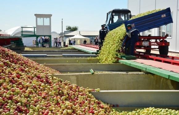 Великий український виробник соків побудує ще один новий завод у Польщі фото, ілюстрація