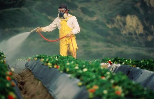 Ще один крок до безпечної утилізації пестицидів зроблено фото, ілюстрація