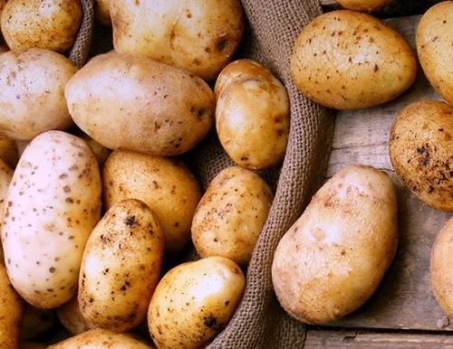 В Украине начал дешеветь картофель фото, иллюстрация
