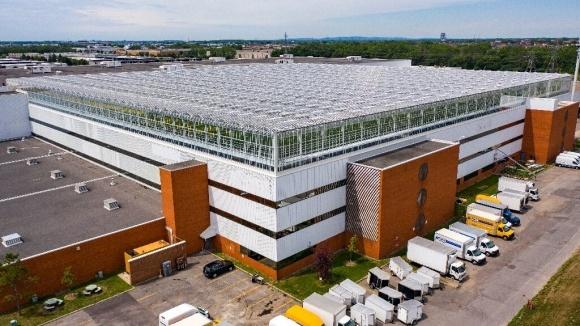 В Канаді запрацювала найбільша в світі дахова теплиця фото, ілюстрація