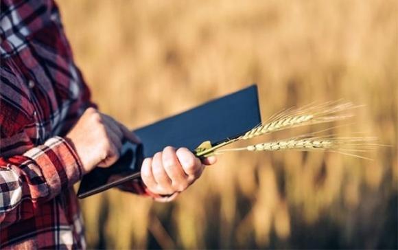 Функціонування Державного аграрного реєстру закріплено на законодавчому рівні фото, ілюстрація