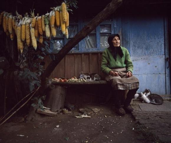 Аграрные ассоциации предложили способ остановить деградацию села фото, иллюстрация