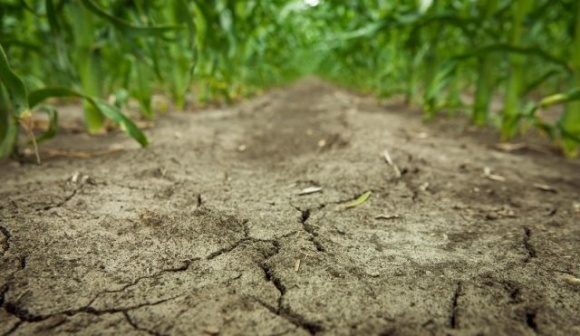 Деградація ґрунту щороку коштує американським фермерам, що вирощують кукурудзу, півмільярда доларів фото, ілюстрація