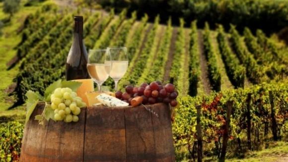 В виноградарей и виноделов появится профессиональный праздник фото, иллюстрация