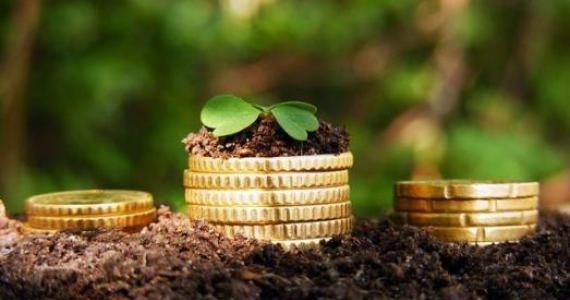 В Украине программа кредитной поддержки аграриям продлевается на 2019 год – замминистра фото, иллюстрация