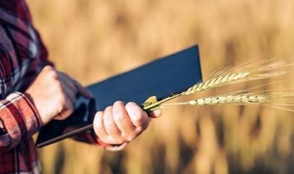 Зеленский подписал закон о создании государственного агрореестра фото, иллюстрация
