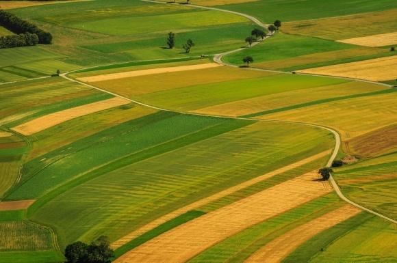 В AgroGeneration розробили унікальну систему обліку земельних ресурсів фото, ілюстрація