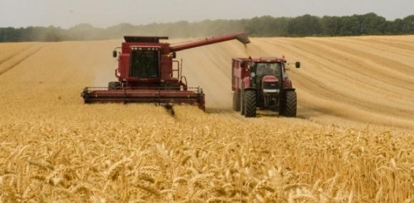 На Дніпропетровщині зібрали перший мільйон тонн зернових фото, ілюстрація