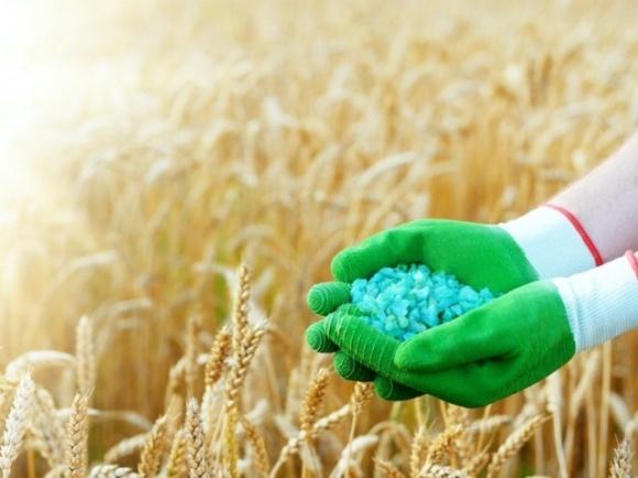 Минэкономики отсрочило принятие решения о введении квот на импорт удобрений фото, иллюстрация