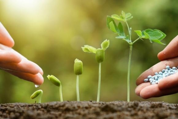 Рост производства основных азотных удобрений в Украине в 2019 году составил 77-87% фото, иллюстрация