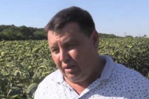 Аграрное давление силовиков: в Донецкой области прибыльное с/х предприятие оказалось под угрозой банкротства фото, иллюстрация
