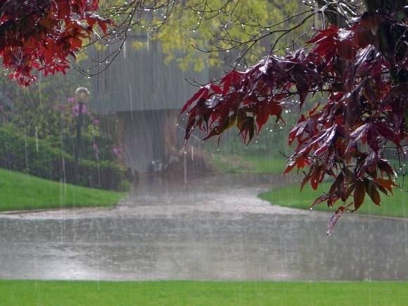 Следущая неделя будет холодная и с дождями фото, иллюстрация