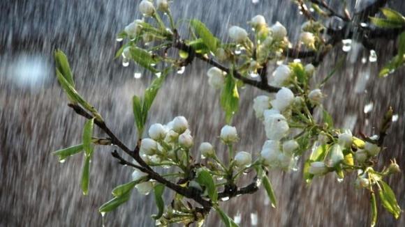 Названо рівень опадів та зволоження ґрунту по регіонах України фото, ілюстрація