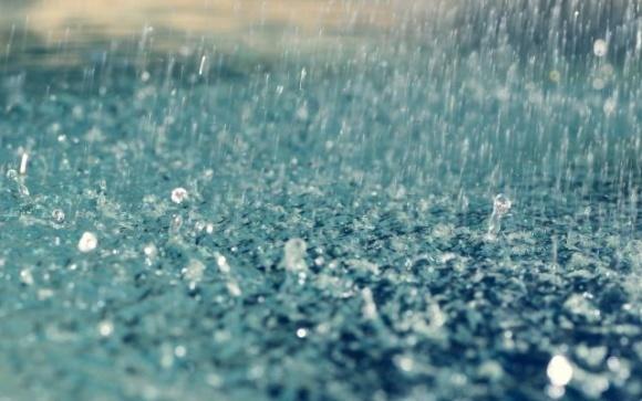 Ни сеять, ни собирать — из-за сильных дождей работы на полях Ивано-Франковщины приостановлены фото, иллюстрация