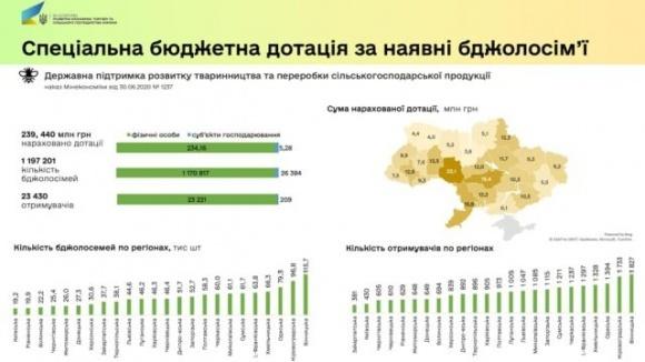 Украинские пчеловоды получили почти четверть миллиарда гривен дотаций фото, иллюстрация