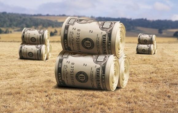 За півроку фермери отримали лише 1% передбачених бюджетом коштів фото, ілюстрація
