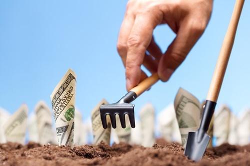 В Украине начал работу портал для проверки денежной оценки земель фото, иллюстрация