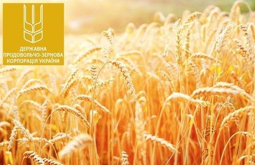 ДПЗКУ наростила обсяги закупівель озимих пшениці та ячменю врожаю 2018 року фото, ілюстрація
