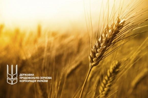 Государственная зерновая корпорация начала весеннюю форвардную программу фото, иллюстрация