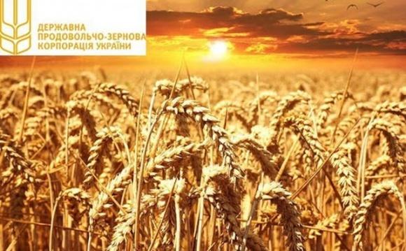 ГПЗКУ начинает осеннюю программу закупок зерна урожая 2021 фото, иллюстрация